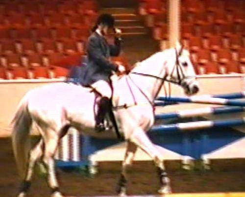 kings-on-air-og-beate-i-klasse-open-150m-towerlands-equestrian-centre 14399807600 o