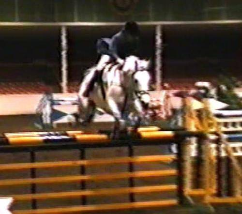 kings-on-air-og-beate-i-klasse-open-150m-towerlands-equestrian-centre 14563409896 o