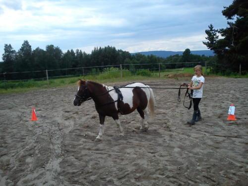 rideleir-2012 7702768116 o